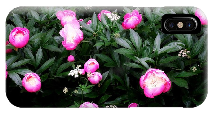 Peony IPhone X / XS Case featuring the photograph Bursting Forth by Deborah Crew-Johnson