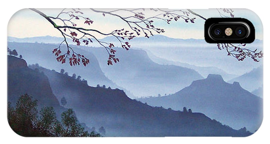 Mural IPhone X Case featuring the painting Butte Creek Canyon Mural by Frank Wilson