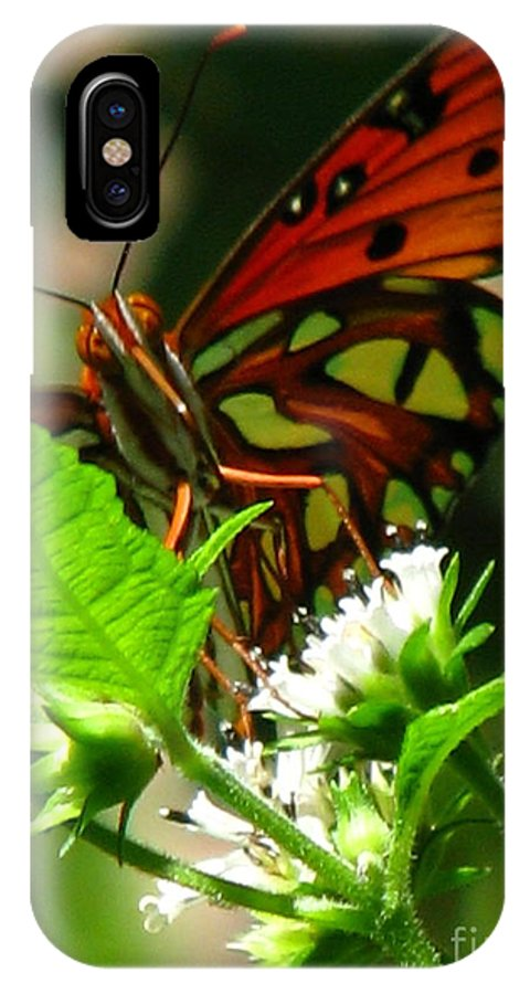 Patzer IPhone X Case featuring the photograph Butterfly Art by Greg Patzer