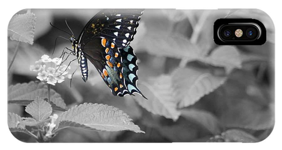 Butterfly IPhone X Case featuring the photograph Butterfly Art Wings Together by John W Smith III