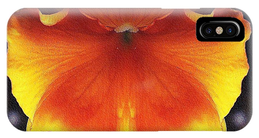 Butterfly IPhone X Case featuring the photograph Butterfly Impression by Lilliana Mendez