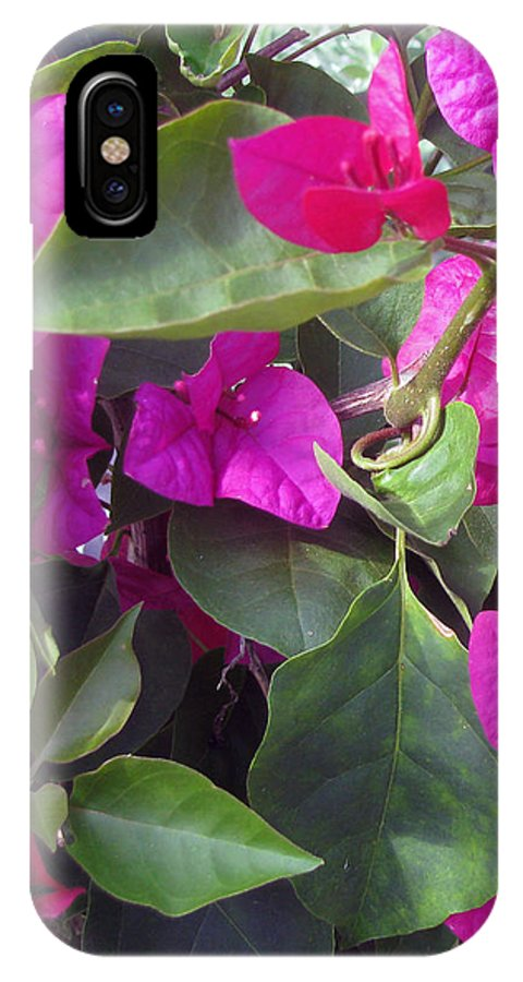 Hot Pink IPhone X Case featuring the photograph Byzantine by Debi Singer