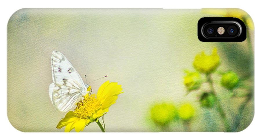 Butterfly IPhone X Case featuring the photograph Cabbage White Butterfly by Cathy Jaramillo