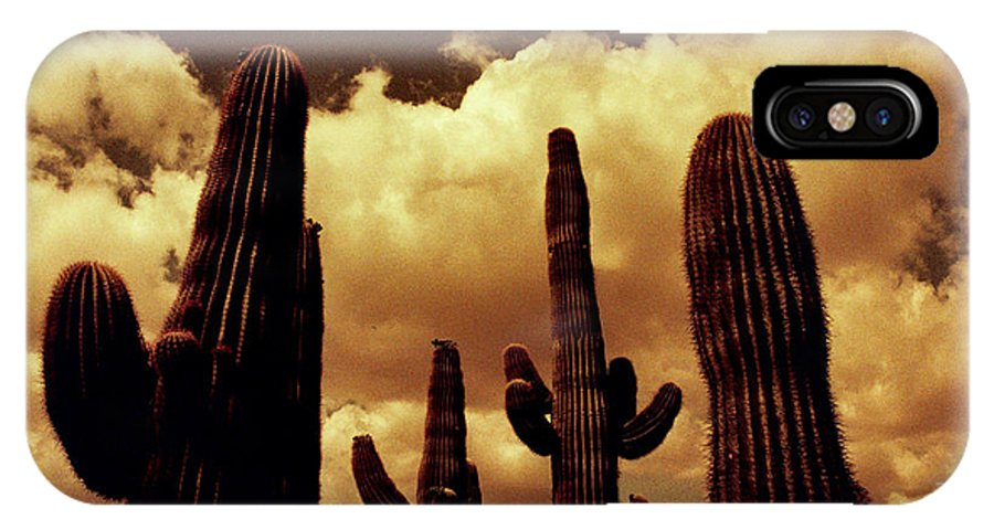 Red Scale IPhone X Case featuring the photograph Cactus 2 by M Landis