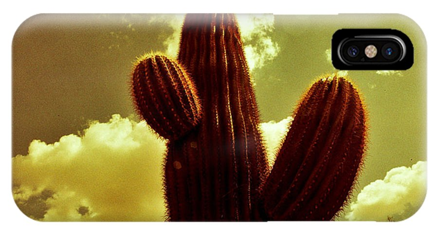 Red Scale IPhone X Case featuring the photograph Cactus 5 by M Landis