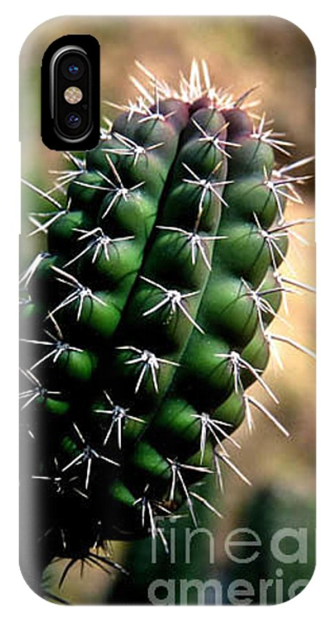 Sahuaro IPhone X Case featuring the photograph Cactus Arm by Kathy McClure