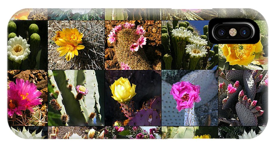 Flowers IPhone X Case featuring the photograph Cactus Collage by Marilyn Smith