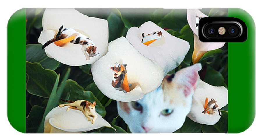 Cat IPhone X Case featuring the digital art Cala In Callas by Lisa Yount
