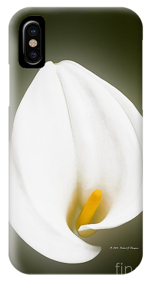 Calla Lily IPhone X Case featuring the photograph Calla Lily Flower Glow by Richard J Thompson