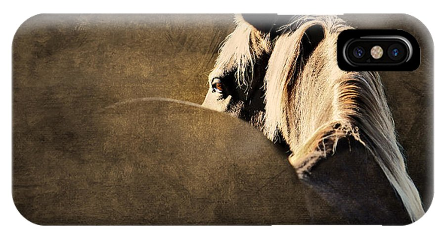 Animal IPhone X Case featuring the photograph Calm Awareness 2 Vignette by Michelle Twohig