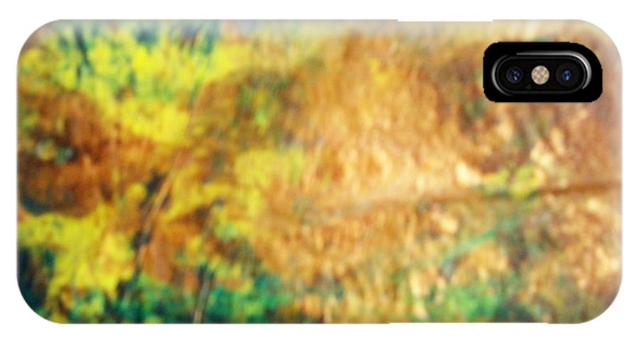 Nature IPhone X Case featuring the painting Camouflage by Sharon Ackley