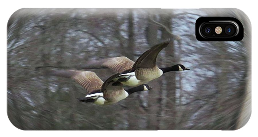 Nature IPhone X Case featuring the photograph Canadian Geese Flying II by Scott Cameron