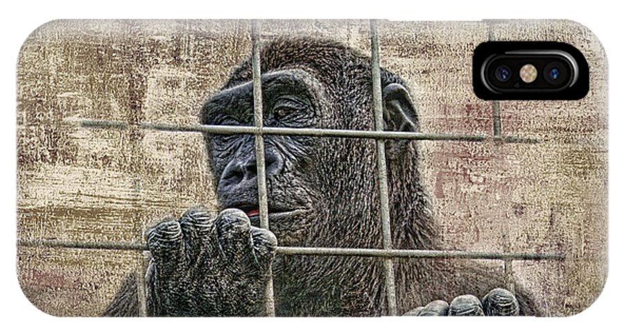 Gorilla IPhone X Case featuring the photograph Captivity by Tom Mc Nemar