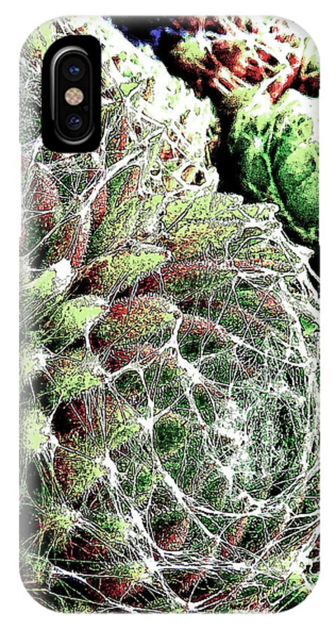 Succulent. House Leak IPhone X Case featuring the photograph Captured Souls by Steve Taylor
