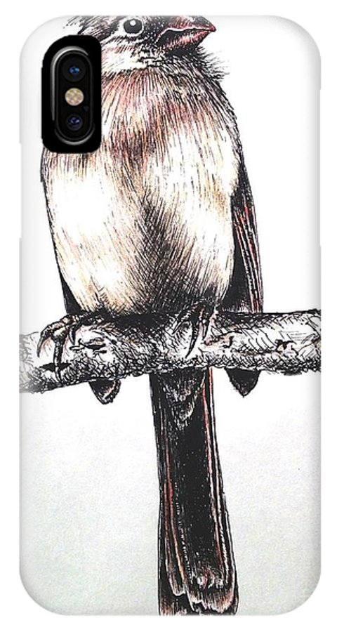 Ink Sketch IPhone X Case featuring the drawing Cardinal Female by Katharina Filus