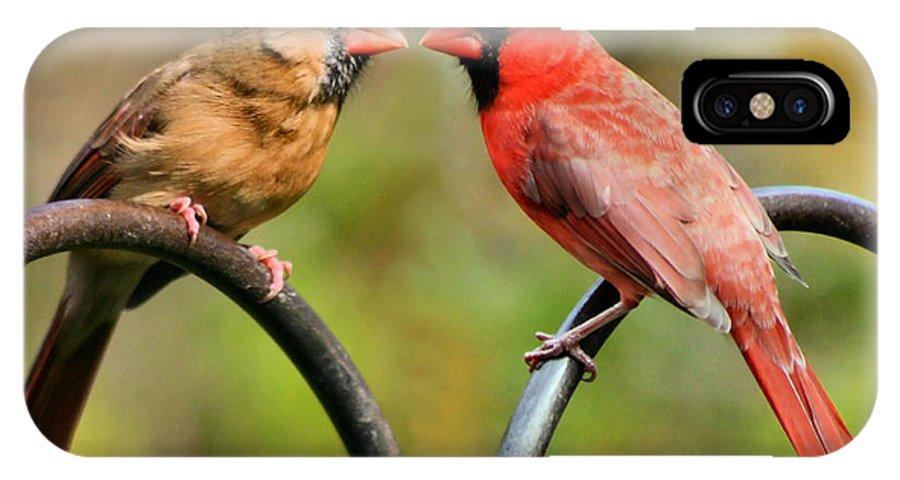 Cardinalis IPhone X Case featuring the photograph Cardinal Love by Kristin Elmquist