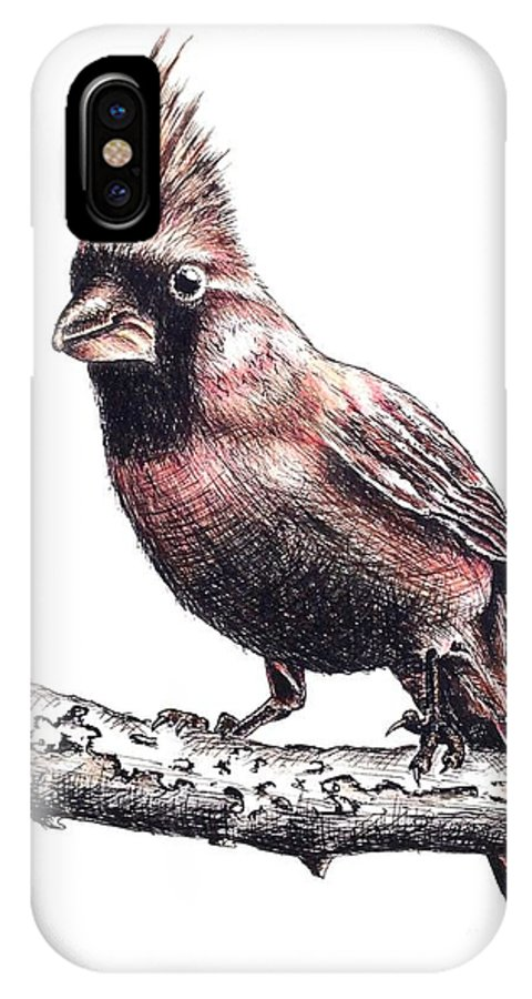Ink Sketch IPhone X Case featuring the drawing Cardinal Male by Katharina Filus