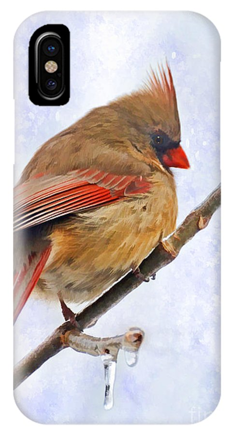 Bird IPhone X Case featuring the photograph Cardinal On An Icy Twig - Digital Paint by Debbie Portwood