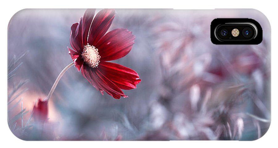 Flower IPhone X Case featuring the photograph Carmen by Fabien Bravin