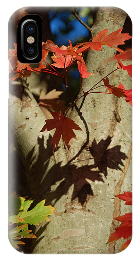 Autumn IPhone X Case featuring the photograph Carolina Autumn by Suzanne Gaff