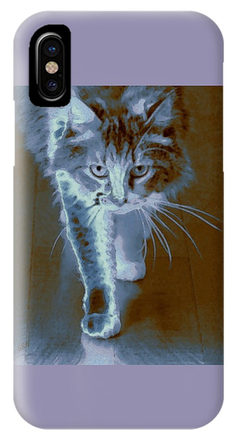 Cat Portrait IPhone X Case featuring the photograph Cat Walking by Ben and Raisa Gertsberg