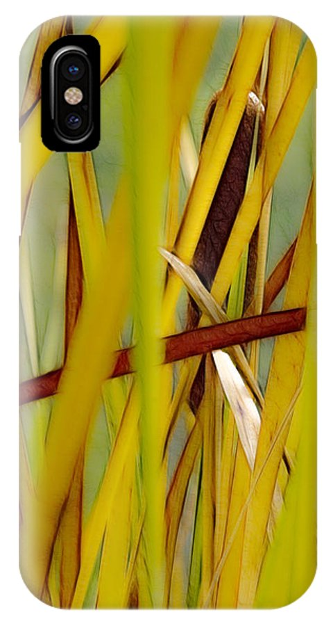 Fall IPhone X Case featuring the photograph Cattail 1 by Albert Seger