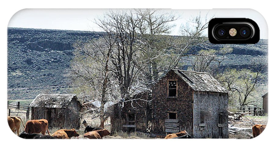 Oregon IPhone X Case featuring the photograph Cattle Flop House by Ray Finch