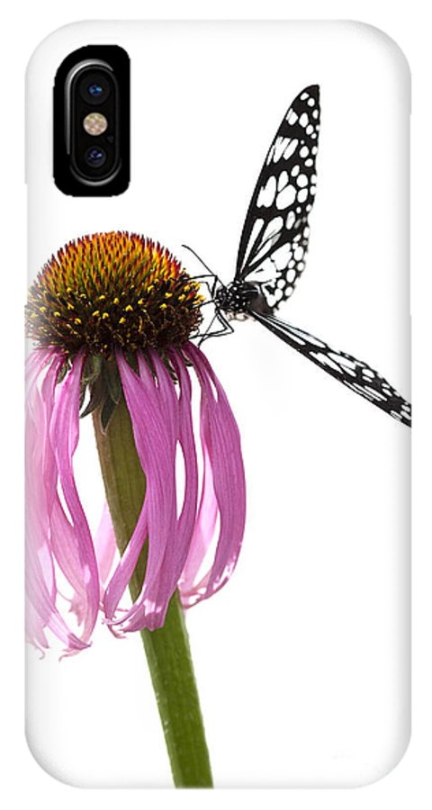 Butterfly IPhone X Case featuring the photograph Celebration by Patty Colabuono