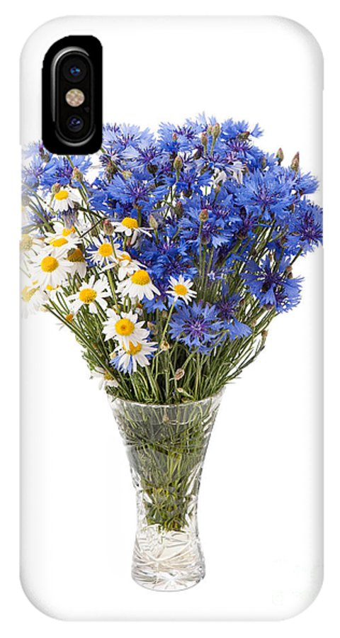 Bachelor IPhone X Case featuring the photograph White Camomile And Blue Cornflower In Glass Vase by Arletta Cwalina