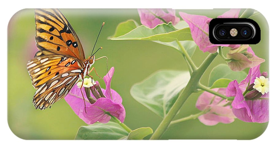 Butterfly IPhone X Case featuring the photograph Chance Encounter by Kim Hojnacki