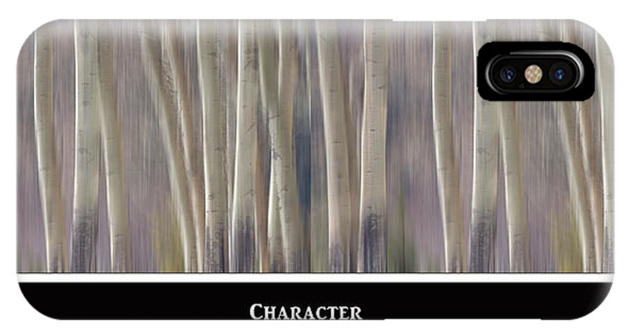 Character IPhone X Case featuring the photograph Character by James BO Insogna