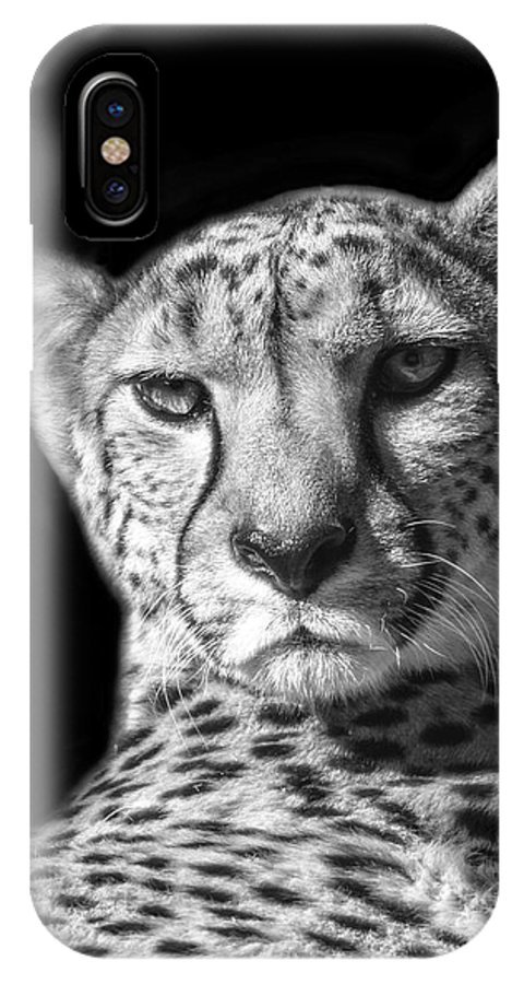 Zoo IPhone X Case featuring the photograph Cheetah In Black And White by Carolyn Fox