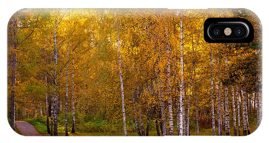 Autumn IPhone X Case featuring the photograph Cherished By Sun by Jenny Rainbow