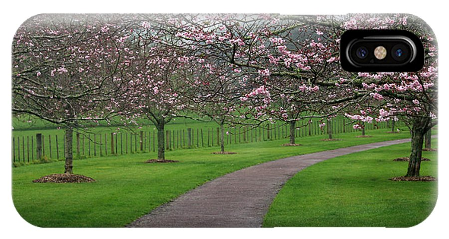 Cherry Blossoms IPhone X Case featuring the photograph Cherry Blossom Path by Gee Lyon