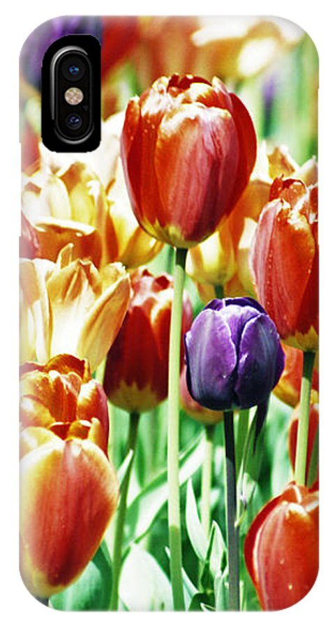 Flowers IPhone X Case featuring the photograph Chicago Tulips by Stephen Hampton
