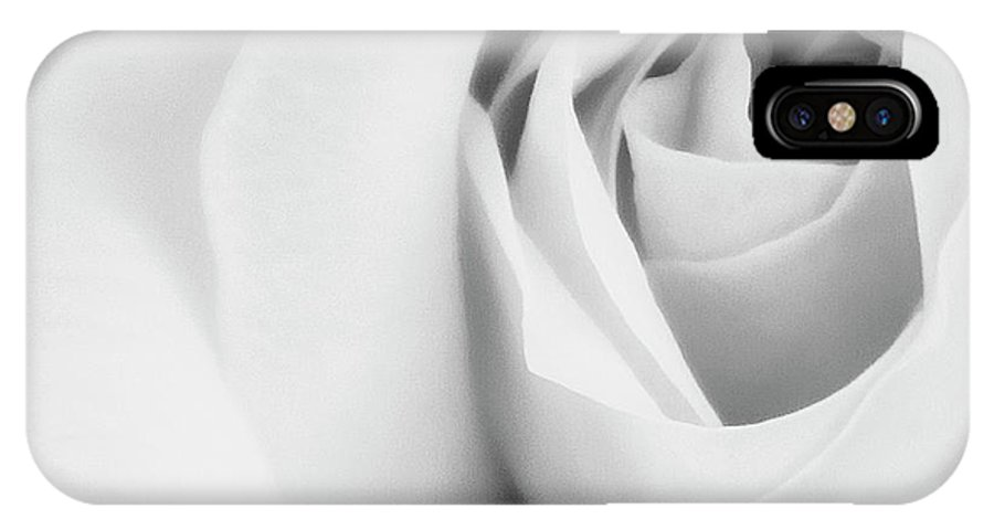 Rose IPhone X Case featuring the photograph Citrine Rose Bw Palm Springs by William Dey