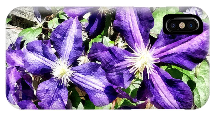 Clematis IPhone X Case featuring the photograph Clematis On A Stone Wall by Susan Savad