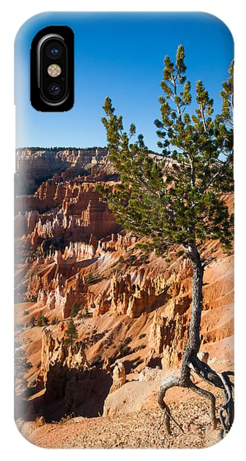 American Southwest IPhone X Case featuring the photograph Clinging To The Edge Bryce Canyon by Dan Hartford