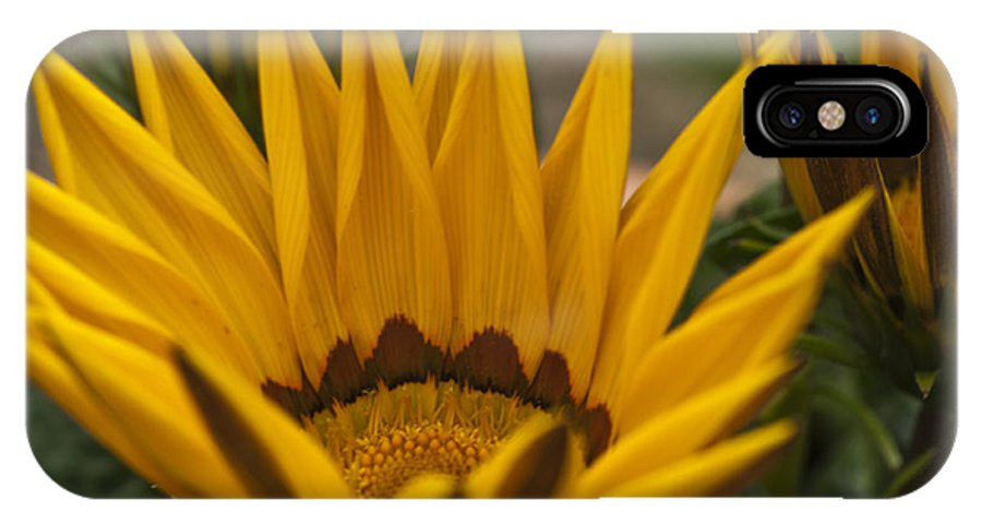 Yellow IPhone X Case featuring the photograph Closing Time by Steve Purnell