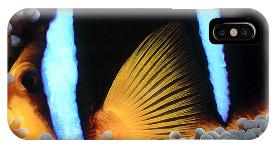 Micronesia IPhone X Case featuring the photograph Clownfish 1 by Dawn Eshelman