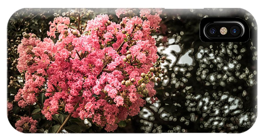 Flowers IPhone X Case featuring the photograph Clump Of Flowers by Jon Cody