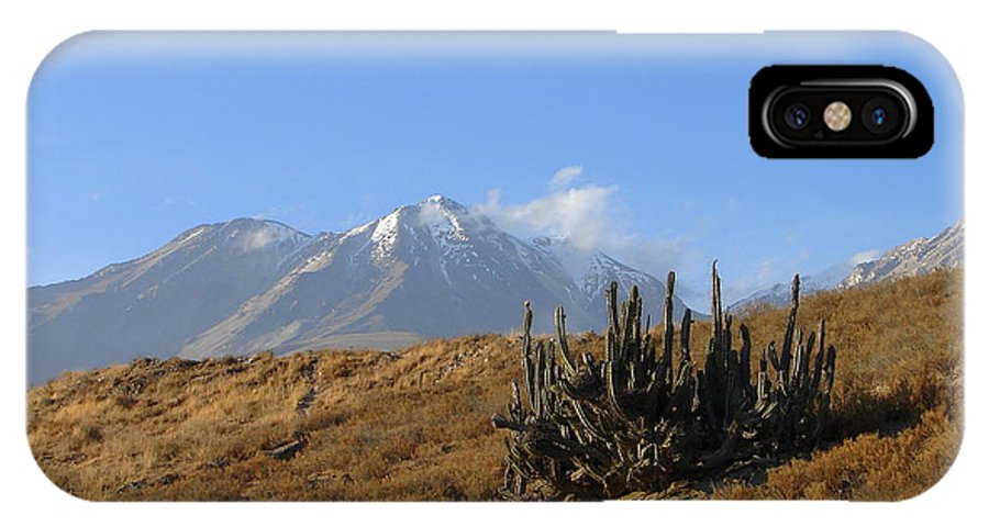 Mountains IPhone X Case featuring the photograph Cold Cactus by Lew Davis