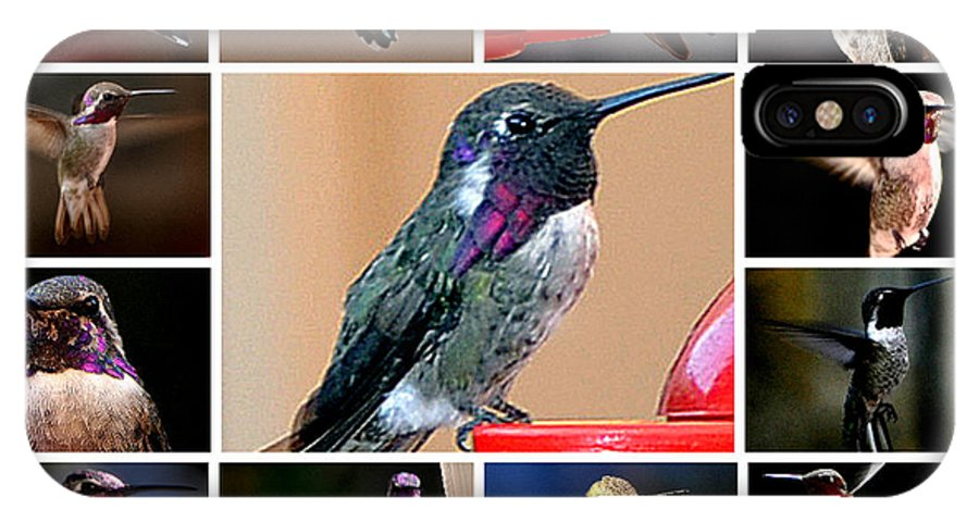 Collage IPhone X Case featuring the photograph Collage Of Hummers by Jay Milo