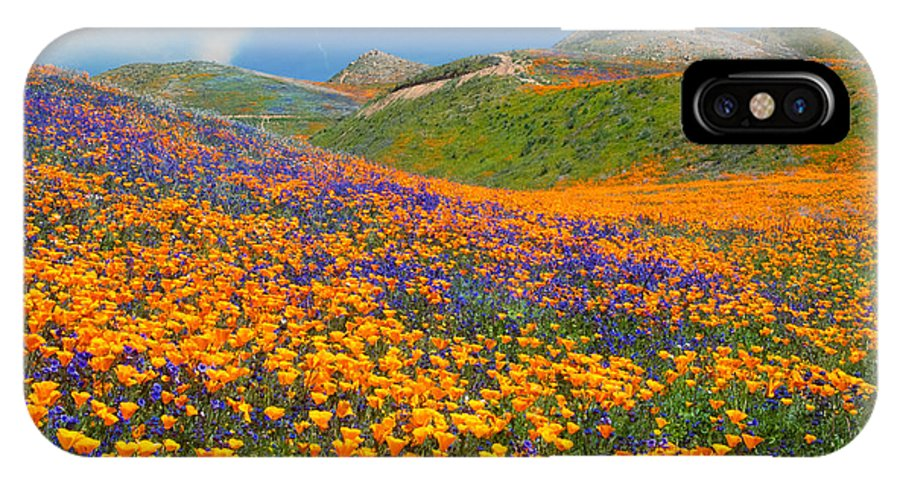 Wildflowers IPhone X Case featuring the photograph Color Filled Hills by Lynn Bauer