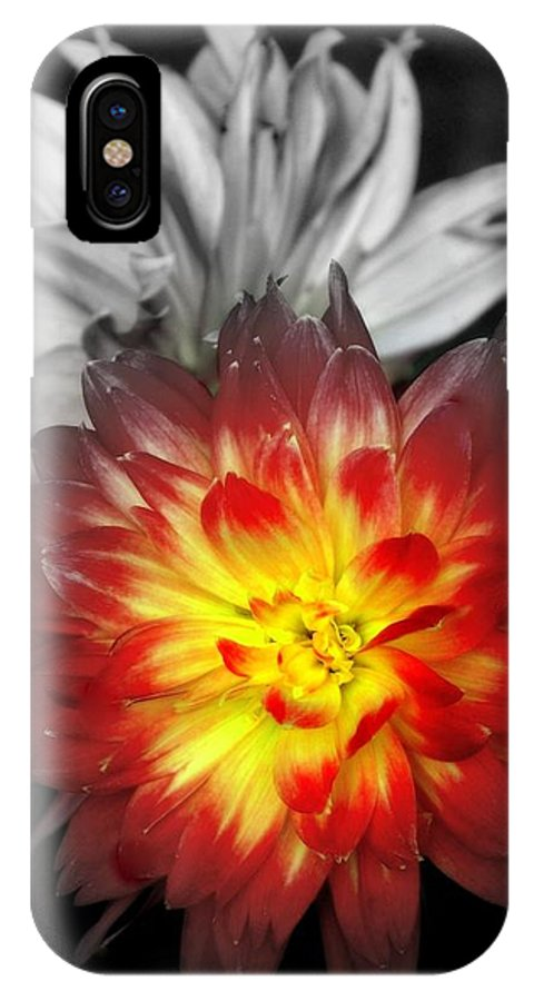 Dahlias IPhone X Case featuring the photograph Color Of Life by Karen Wiles