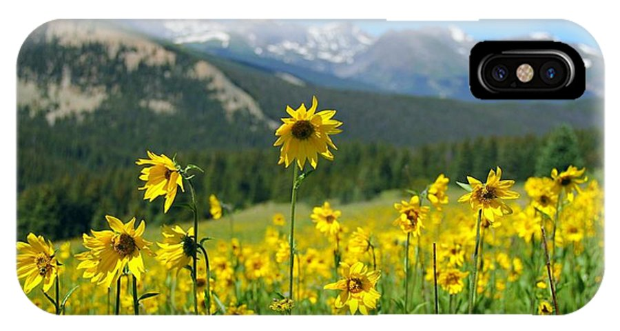 Colorado IPhone X Case featuring the photograph Colorado Wildflowers by Danielle Marie