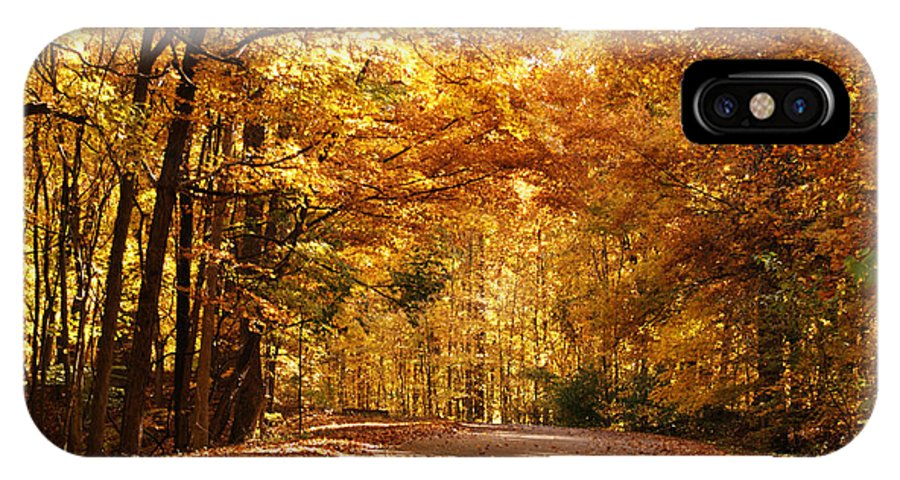 Autumn IPhone X Case featuring the photograph Colorful Canopy by Sandy Keeton