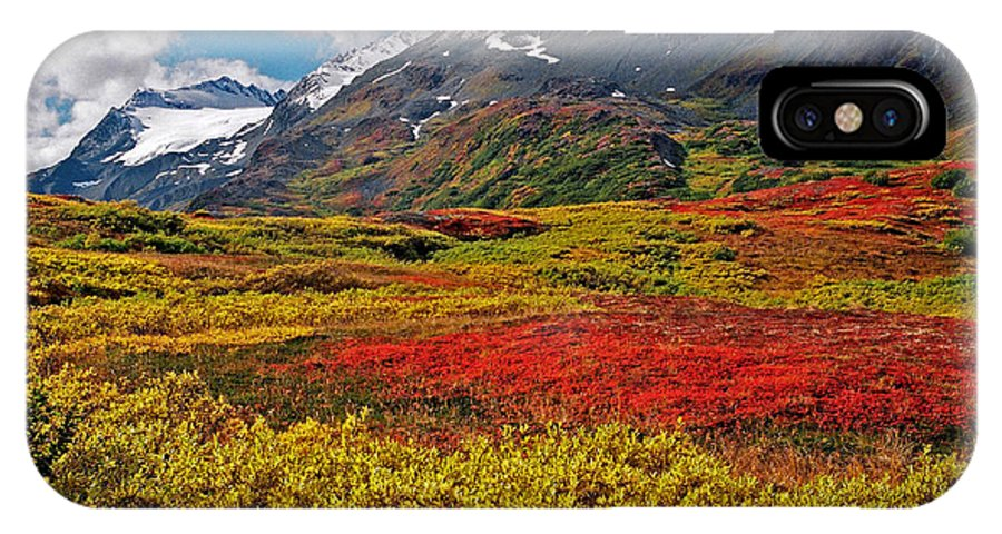 Alaska IPhone X Case featuring the photograph Colorful Land - Alaska by Juergen Weiss
