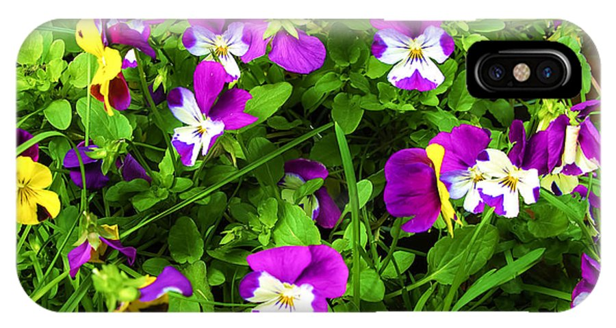 Pansy IPhone X Case featuring the photograph Colorful Pansies by Sherman Perry