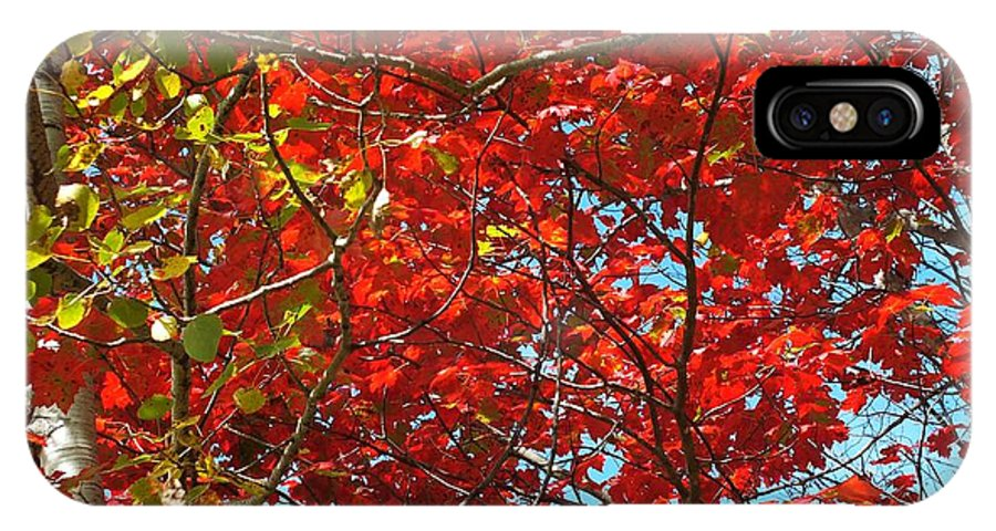 New England IPhone X Case featuring the photograph Colors Of Fall 3 by Gene Cyr